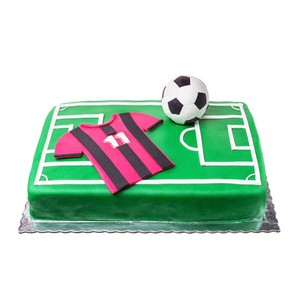 Soccer Cake with your Team 1